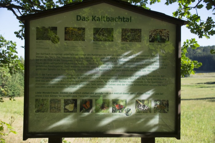 Kaltbachtal