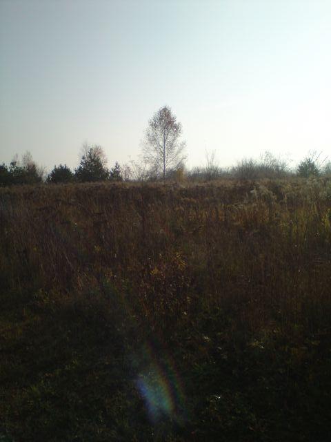 Przeprawa przez 1,2m trawy Niemcz