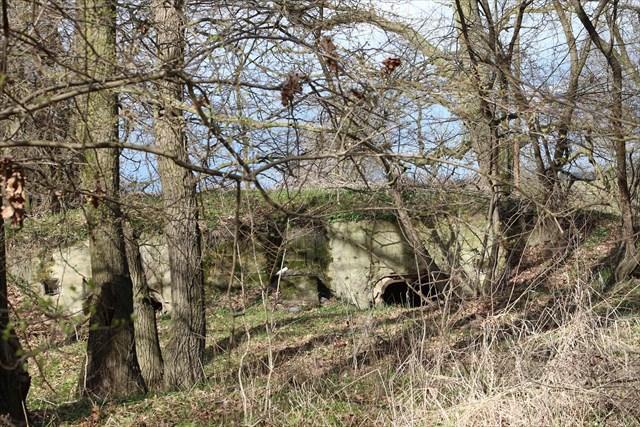 ODERSTELLUNG/289 - Linia Środkowej Odry