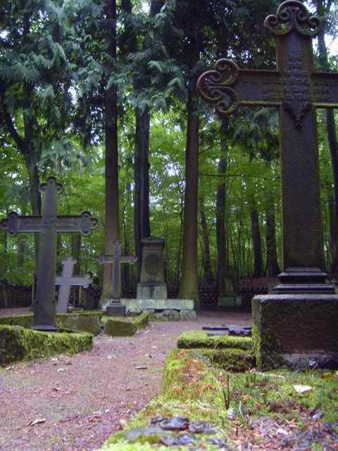 Cmentarz Leśników