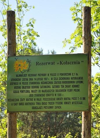 Najmniejszy rezerwat w Polsce