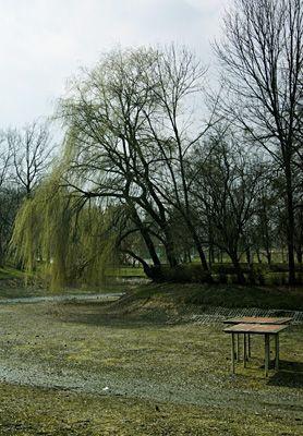 Zamojski Park Miejski