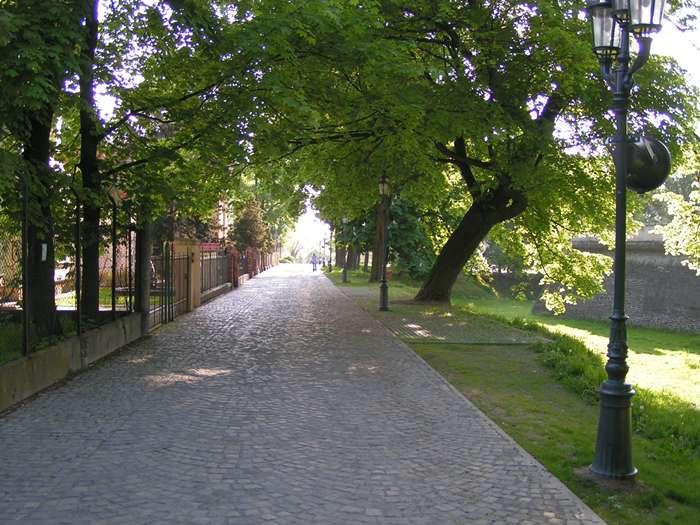 Pod Kasztanami
