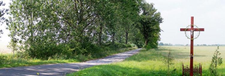 Transwielkopolska Trasa Rowerowa