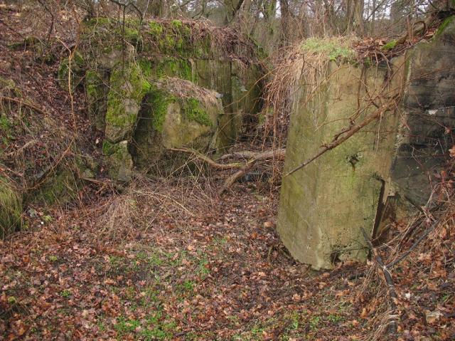 ODERSTELLUNG/244 - Linia Środkowej Odry