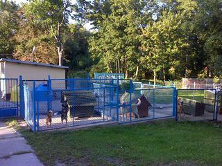 Płock - Schronisko dla zwierząt