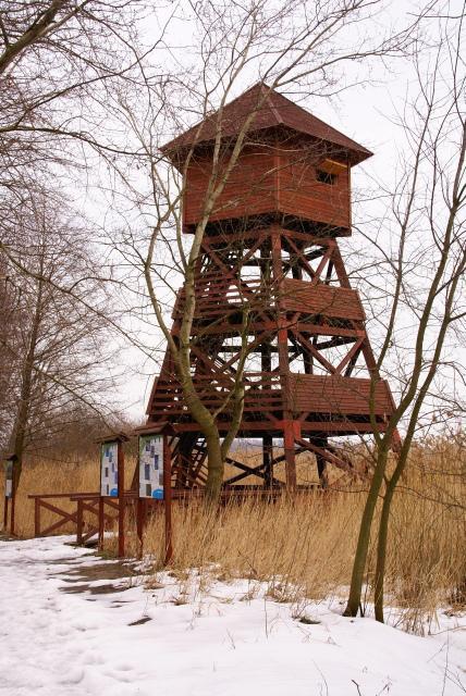 Wieża widokowa (ash15)