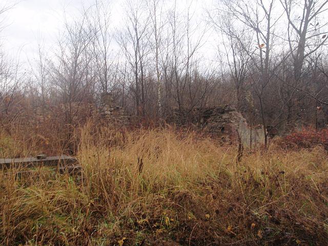 Leśna osada