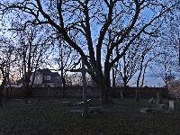 cmentarz koszajec