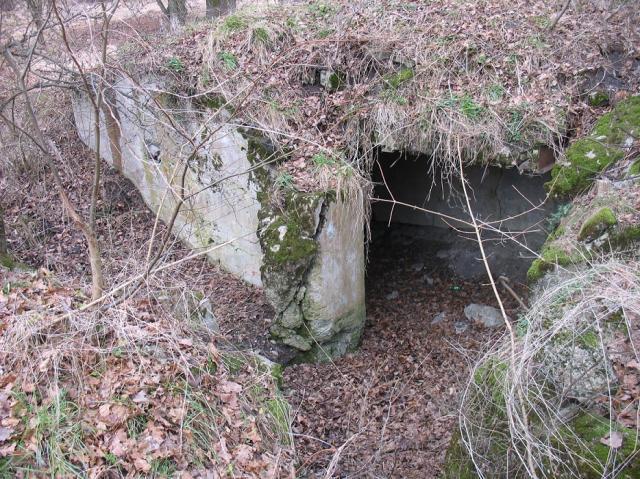 ODERSTELLUNG/286 - Linia Środkowej Odry