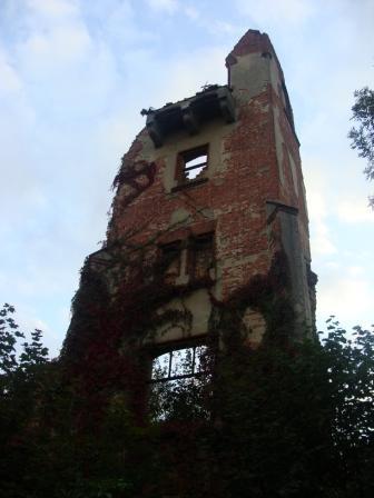 A362- Ruiny pałacu w Lubnie.