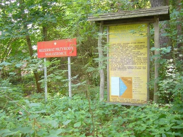 MAŁOZIEMCE - rezerwat przyrody