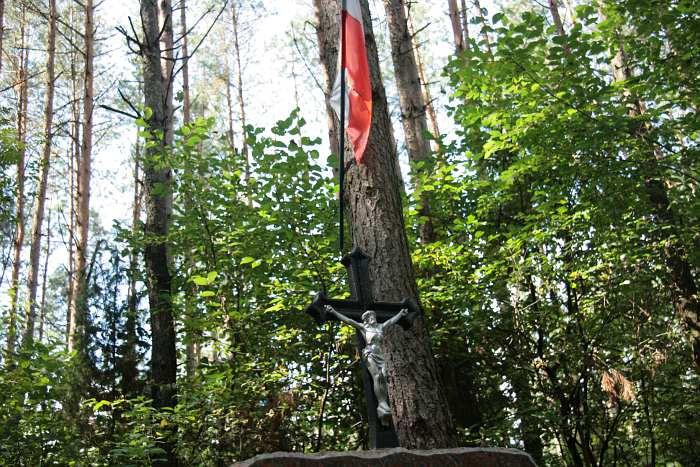 Pomnik w lesie