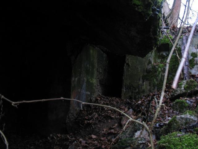 ODERSTELLUNG/245 - Linia Środkowej Odry